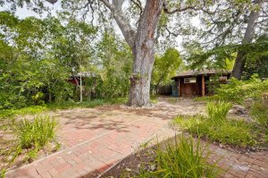 This tiny shack in Palo Alto listed on Oct. 14, 2015, for nearly $2 million. (Credit: @alexwang)