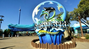 A Sea World sign is seen in this file photo taken from the marine park's Facebook page.