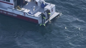 Divers enter the water off the L.A. harbor in the search for a possible downed plane on Feb. 5, 2016. (Credit: KTLA)