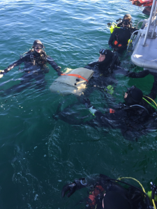 Dive crews discovered the remains of two people on Feb. 7, 2016, two days after an apparent midair crash off L.A. harbor. (Credit: Los Angeles County Sheriff's Department)