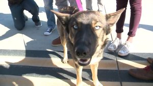 Luna was presumed dead after falling off a fishing boat near San Clemente Island and not being seen for nearly five weeks. (Credit: KSWB)