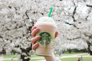 The Cherry Blossom Frappuccino contains strawberry puree, cream, white chocolate sauce, whipped cream and matcha (green tea powder). (Credit: Starbucks)