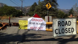 A sign warns Angeles National Forest visitors of a bear sighting at the Millard Campground on June 25, 2016. (Credit: Los Angeles County Sheriff's Department Altadena Station)