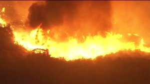 A wall of flame is seen on a hillside in Calabasas on June 4, 2016. (Credit: KTLA)
