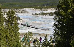 A view of the Norris Geyser Basin at Yellowstone National Park on May 12, 2016. (Credit: MLADEN ANTONOV/AFP/Getty Images)
