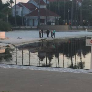 An alligator snatched a 2-year-old boy Tuesday night in a lagoon at a Disney hotel near Orlando as his father desperately tried to save him. (Credit: Katherine White Popp)