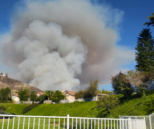Smoke rises above homes as a brush fire burns in Calabasas on June 4, 2016. (Credit: Lacey Sculls)