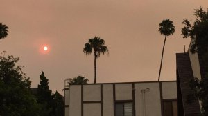 Smoke and ash fill the sky in Pasadena on July 23, 2016. (Credit: Hailey Branson-Potts / Los Angeles Times)
