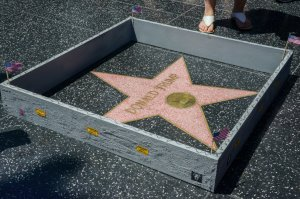 A 6-inch concrete wall was placed around Donald Trump's star on the Hollywood Walk of Fame on July 19, 2016. (Credit: Plastic Jesus)