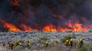 Firefighters work around the Blue Cut fire near Wrightwood. (Credit: Irfan Khan/Los Angeles Times)
