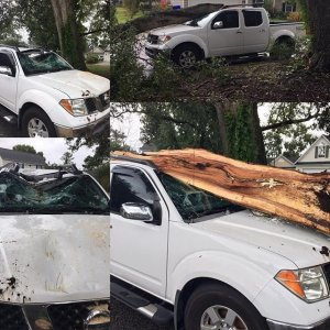 Hermine left a trail of destruction in her path as the storm has traveled up the East coast. This truck was severely damaged in South Carolina when a tree fell on it. (Credit: CNN)