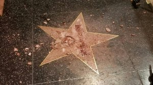 Donald Trump's Walk of Fame star is pictured after it was vandalized on Oct. 26, 2016. (Credit: Jamie Moreno).