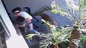 Surveillance video shows two dogs attacking a mother and child in Anaheim on Nov. 8, 2016.