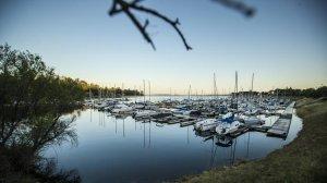 A view of Folsom Lake Marina on Folsom Lake near Sacramento in May. (Credit: Allen J. Schaben/Los Angeles Times)