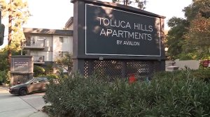 Authorities were investigating a fatal shooting at the Toluca Hills Apartments in Hollywood Hills on Nov. 29, 2016. (Credit: KTLA)