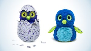 Interactive creatures called Hatchimals became one of the most wanted toys of the year. (Credit: Courtesy Spin Master)