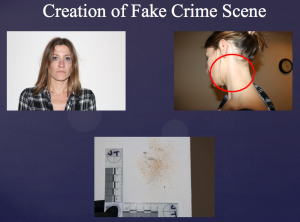 The Orange County DA's office included this slide in a Jan. 9, 2017, presentation of the allegations against Angela Diaz.