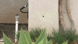 A bullet hole pierced a home in Pomona where a boy was fatally shot on Feb. 20, 2017. (Credit: KTLA)