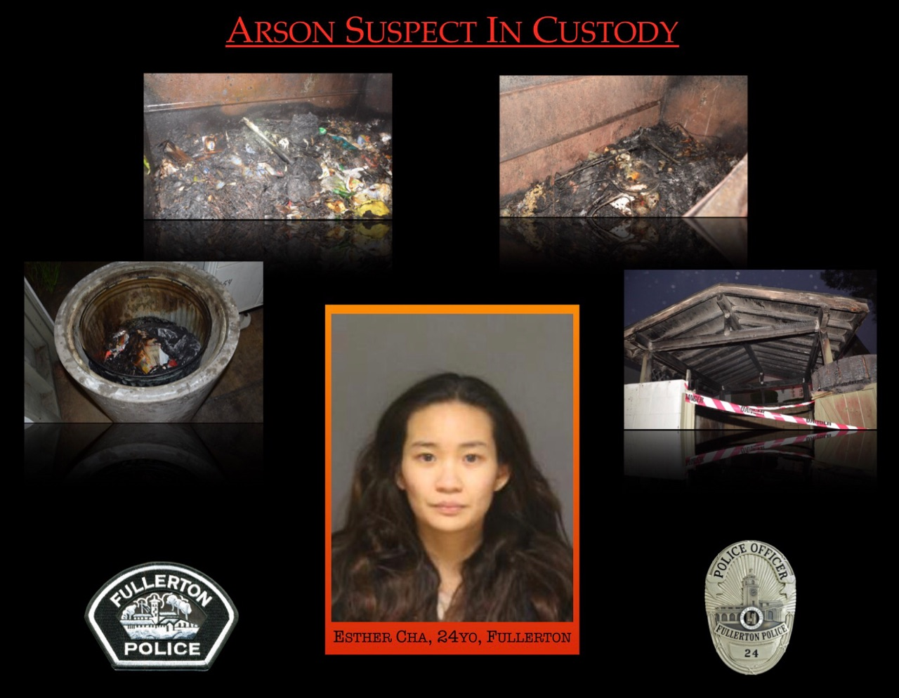 """Fullerton police officials released this collage of crimes they believe are tied to Eun """"Esther"""" Cha on Feb. 20, 2017."""