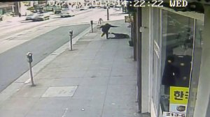 Surveillance video captured the moment an 83-year-old woman was shoved to the ground in Koreatown on Feb. 1, 2017.