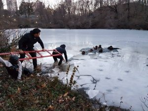 People extend a ladder to help teens out of ice water in Central Park on Feb. 20, 2017. (Credit: Lourdes Cuevas)c