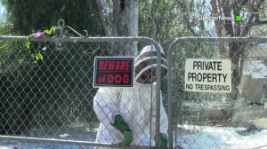 A vector control official responds to the 1000 block of Parkridge Avenue in Norco, where two people and a dog were repeatedly stung by bees on Feb. 23, 2017. (Credit: Casper News)