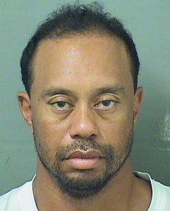 Tiger Woods is seen in a booking photo released by the Palm Beach County Sheriff's Office.