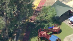 Three children were injured after a branch fell near a play area at a daycare-type center in Pasadena on Aug. 29, 2017. (Credit: KTLA)