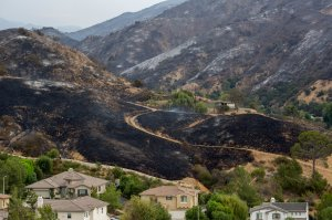 Scorched terrain sits behind houses that were untouched by the La Tuna Fire on Sept. 3, 2017. (Credit: David McNew / Getty Images)