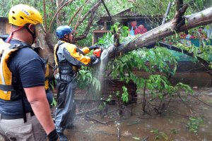 Search and rescue crew members clears a fallen tree over a road during a search mission as hurricane Irma hits Puerto Rico in Fajardo on September 6,2017. (Credit: RICARDO ARDUENGO/AFP/Getty Images)