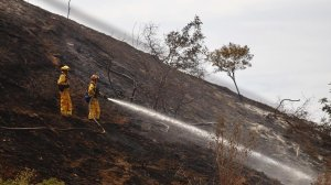 Firefighters work hot spots on steep terrain in the hills above Sun Valley on Sunday morning. (Credit: Francine Orr/Los Angeles Times)