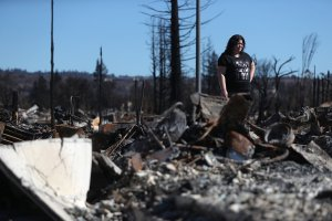 Renee Hernandez looks over the remains of her Coffey Park home that was destroyed by the Tubbs Fire, on Oct. 23, 2017 in Santa Rosa. (Credit: Justin Sullivan / Getty Images)