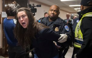Capitol Police arrest a protester demonstrating against tax reform outside a Senate Budget Committee hearing on Capitol Hill, Nov. 28, 2017. (Credit: Saul Loeb / AFP / Getty Images)