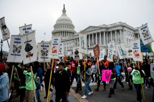 People protesting the cancellation of the Deferred Action for Childhood Arrivals program rally outside the Capitol Building in Washington, DC, on Dec. 6, 2017. (Credit: Brendan Smialowski / AFP / Getty Images)