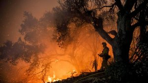 A firefighter battles the Thomas Fire in the Shepard Mesa neighborhood of Carpinteria on Dec. 10, 2017. (Credit: Marcus Yam / Los Angeles Times)