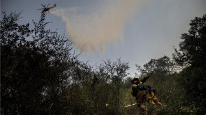 Firefighters work on clearing out brush while a helicopter makes a water drop on a Thomas Fire hot spot in the Santa Ynez Mountains on Dec. 29, 2017. (Credit: Marcus Yam / Los Angeles Times)