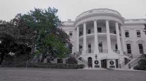 The south facade of the White House will undergo a dramatic change this week: the historic Jackson Magnolia, a tree that has been in place since the 1800s, is scheduled to be cut down and removed. (Credit: Jeremy Moorhead/CNN)