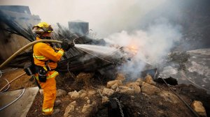 Firefighter Chris Black with the Sacramento Fire Department douses flames Tuesday in Toro Canyon in Carpinteria. (Credit: Al Seib / Los Angeles Times)