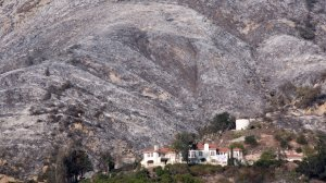 Ashen hillsides that were burned in burned in the Thomas Fire in Carpinteria take on a nearly winter-like appearance on Dec. 20, 2017. (Credit: David McNew/Getty Images)