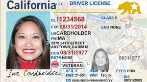 """A sample of a California """"Real ID"""" is seen in a photo from the DMV's website."""