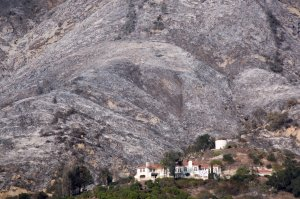 Ashen hillsides that were burned in the Thomas Fire take on a nearly winter-like appearance on Dec. 20, 2017, near Carpinteria. (Credit: David McNew/Getty Images)