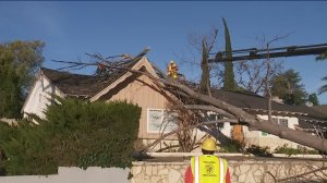 Crews respond to a home in Porter Ranch on Jan. 28, 2018 after winds knocked down a tree. (Credit: KTLA)