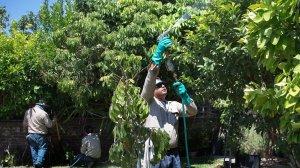 Crews work in a backyard in San Gabriel in 2015. (Credit: Gina Ferazzi / Los Angeles Times)