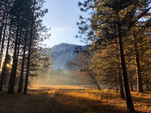 The Yosemite National Park posted this image of the Ahwahnee Meadow on Feb. 25, 2017.