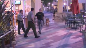 Bloodhounds and investigators comb the Promenade on the Peninsula mall in Rolling Hills estates for clues after a woman was found dead in the parking garage on May 3, 2018. (Credit: KTLA)