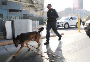 A Customs and Border Protection officer with canine walks to inspect vehicles entering the United States at the San Ysidro port of entry on April 9, 2018 in San Ysidro, California. (Credit: Mario Tama/Getty Images)