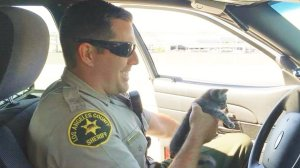 L.A. County sheriff's Deputy Driscoll holds a kitten that he rescued in Lancaster on June 28, 2018. (Courtesy: Los Angeles County Sheriff's Department)