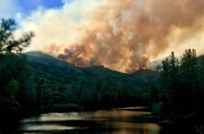 The Carr Fire burns in Shasta County in a photo tweeted July 25, 2018, by Cal Fire's Shasta-Trinity Unit.