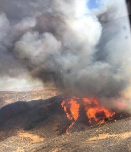 A brush fire ignited near Castaic on Sept. 22, 2018. (Credit: Los Angeles County Fire Department Air Operations)