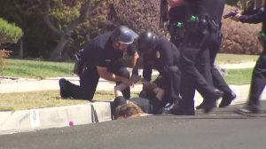A woman is detained outside a home in the Harbor Gateway neighborhood in connection with a homicide investigation on Sept. 12, 2018. (Credit: KTLA)